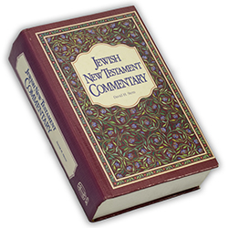 0315 - Book Jewish New Testament Commentary