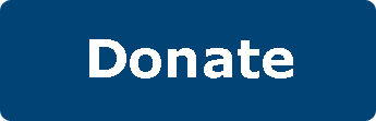 Blue Donate Button