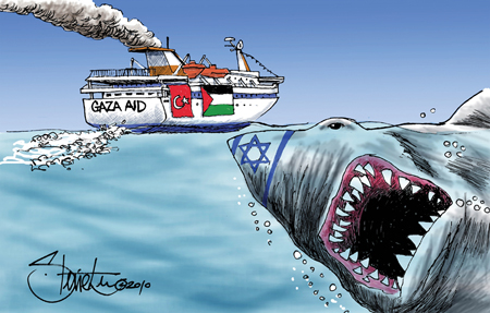 0710 Flotilla Cartoon