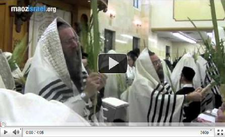 Sukkot 2010 video thumb