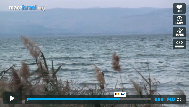 Galilee video thumb